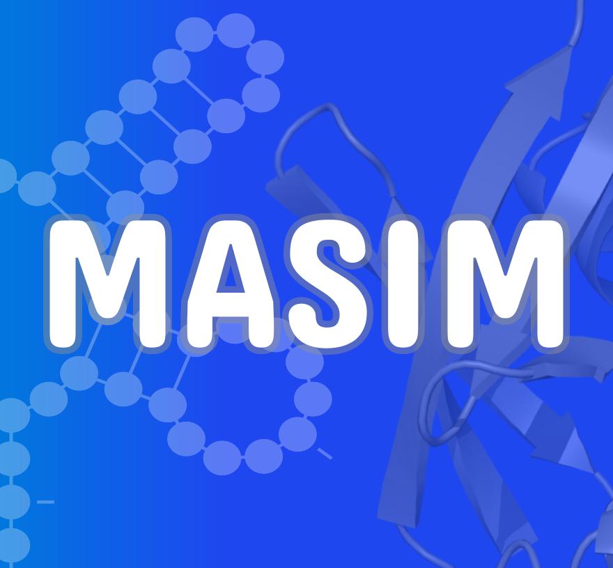GT MASIM